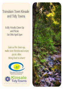 Scilly  Woods Clean up April 18th 2015